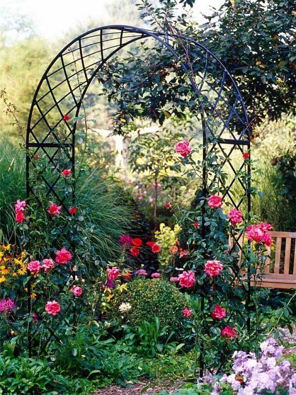 опоры для плетистых роз фотографии вот технически мосты