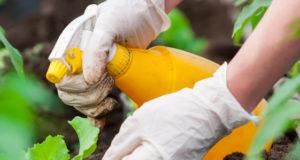 Не менее 30% средств для защиты растений — подделка